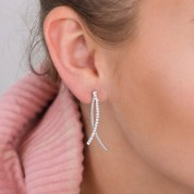 Abstract Sparkly Fish Earrings